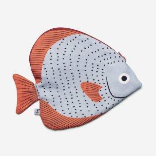 DON FISHER / Madagascar - Circular Batfish - CASE