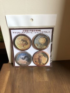 北海道大学総合博物館 アインシュタインドーム・レリーフマグネット