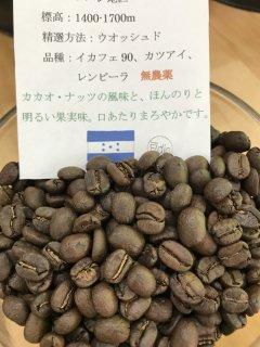 ホンジュラス豆 コパンサンタローザ(無農薬) 200g