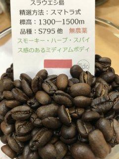 残りわずか!インドネシア無農薬豆 ママサトラジャ 200g
