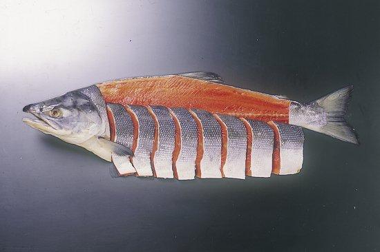 紅鮭1尾 内容量:2.2kg前後