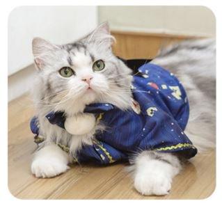 猫コスチューム 和服 和ロリ 着物 上着 羽織り かわいい リボン ロリータ Lolita 猫ちゃん ネコ ペット用 和柄 プリント 大きいサイズ サイズ豊富 おでかけ イベント  【ポスト投函対応】