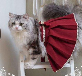 猫コスチューム3色 袴 スカート 和服 和ロリ 着物 かわいい リボン ロリータ Lolita 猫ちゃん ネコ ペット用 和風 無地 大きいサイズ サイズ豊富 おでかけ イベント パーティ ゴスロリ