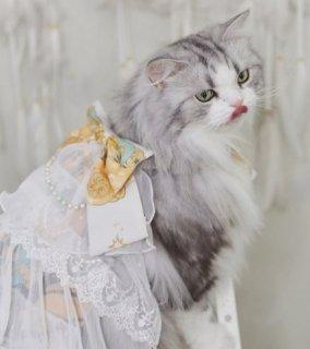 猫用コスチューム 猫用 ネコちゃん ペット用コスチューム かわいい 甘ロリ スカート ティアード チュール ふんわり メイド風 レース ふんわり おしゃれ イベント おでかけ ゴスロリ ロリータファッ