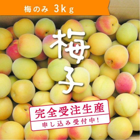 【受付終了】3kg   梅子の梅(梅のみ)
