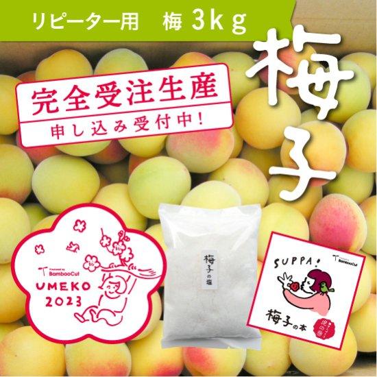 【受付終了】 3kg  だれでもおいしく梅干しづくりキット梅子2021(リピーター用)
