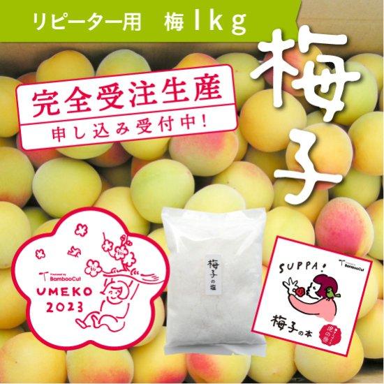 【受付終了】 1kg  だれでもおいしく梅干しづくりキット梅子2021(リピーター用)