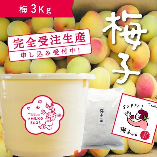 【受付終了】 3kg   だれでもおいしく梅干しづくりキット梅子2021