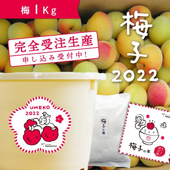 1kg   だれでもおいしく梅干しづくりキット梅子2020【受付終了】