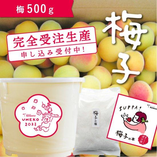 【受付終了】 500g   だれでもおいしく梅干しづくりキット梅子2021