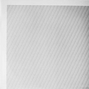 Francisco López / Untitled #300 (LP)