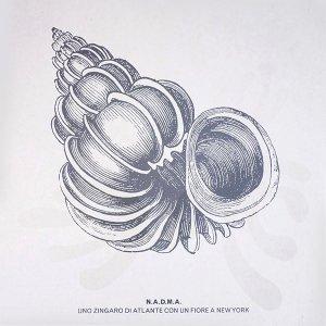 N.A.D.M.A. / Uno Zingaro Di Atlante Con Un Fiore A New York (LP)