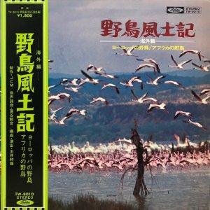 蒲谷鶴彦  / 野鳥風土記:海外編 (LP)