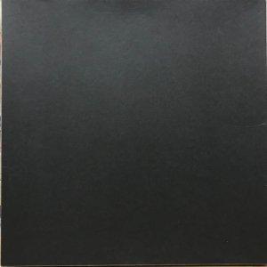 Ignaz Schick / Butania Metallica (LP)