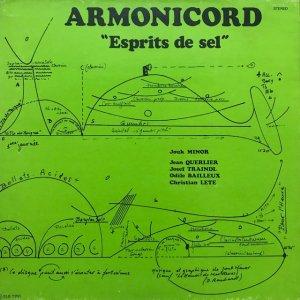Armonichord / Esprits De Sel (LP)