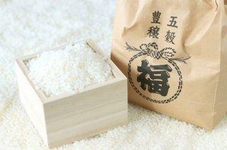 米二種食べ比べセット 玄米 5kg×2袋