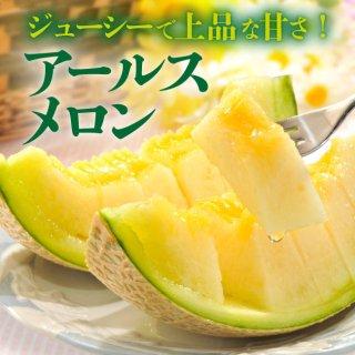 とろける果肉と甘さの熊本産アールスメロン【送料無料】