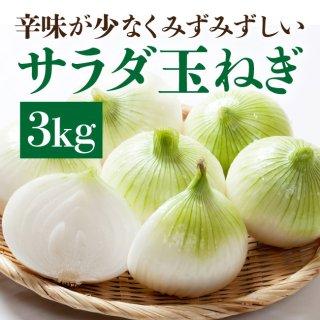 サラダ玉ねぎ 3kg【2箱以上購入で送料無料】