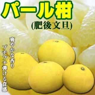 【送料無料!】パール柑 約5kg サイズ混合