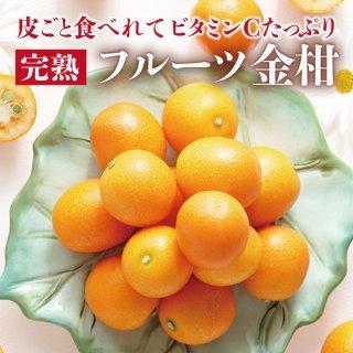 【数量限定】フルーツきんかん1.5kg【2箱以上送料無料】