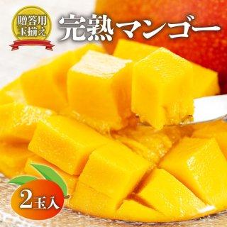 【贈答用】熊本完熟マンゴー(玉揃え)