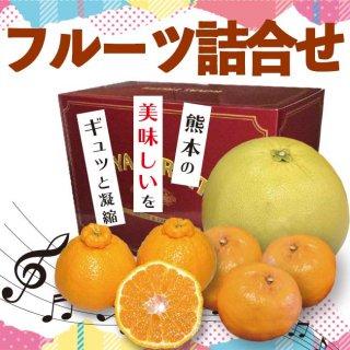 【送料無料】フルーツ詰合せ 冬