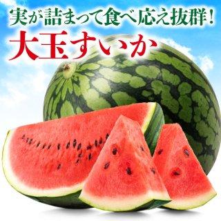 【送料無料】大玉すいか〜肥後漫遊〜1玉入り(6kg以上)
