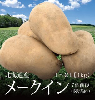 メークイン 北海道産 じゃがいも 袋詰め 1kg 約7個 L-2Lサイズ