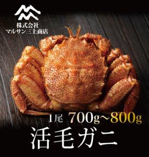活毛ガニ 北海道産 700~800g