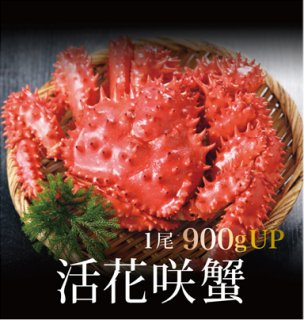 活花咲蟹 900g以上