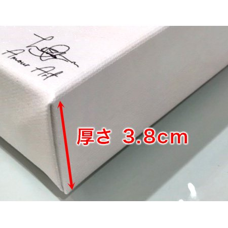 アモアアート(AMOUR ART)ROSED UP【AA0106A】25.4cm × 38.1cm
