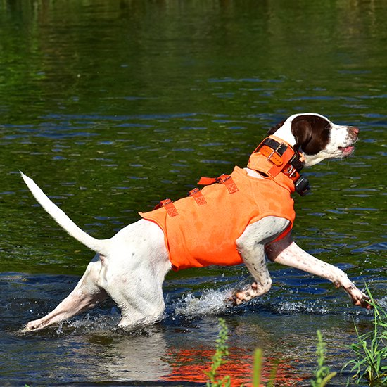 <img class='new_mark_img1' src='https://img.shop-pro.jp/img/new/icons29.gif' style='border:none;display:inline;margin:0px;padding:0px;width:auto;' />【G】※首まわり強化版※ 猟犬用・野外活動犬用ベスト オレンジドッグベスト Orange Dog Vest