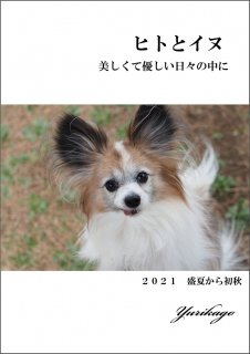 <ご予約スタート>ヒトとイヌ 〜美しくて優しい日々の中に〜 2021盛夏から初秋