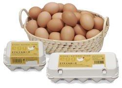 【冷蔵】きすき平地飼い卵6個入り