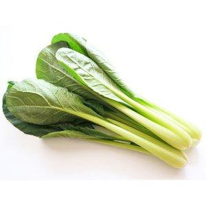 【冷蔵】有機小松菜