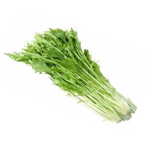 【冷蔵】有機水菜
