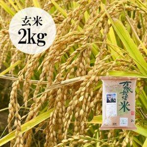 【数量限定】山形県・佐藤さんの有機栽培こしひかり玄米2kg