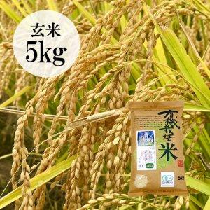 【数量限定】山形県・佐藤さんの有機栽培こしひかり玄米5kg
