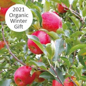 平井さんの季節のりんご詰め合わせセット5kg 15001 【送料込み】