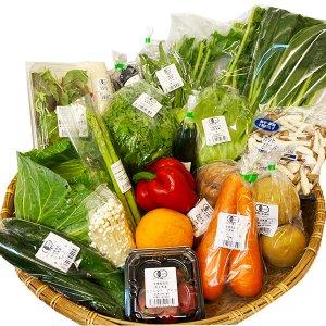 20種類の旬野菜BOX