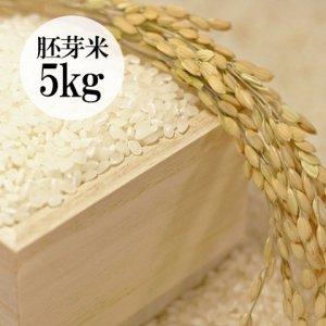 群馬県・金井さんの有機栽培こしひかり胚芽米5kg