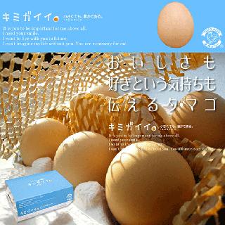 産地直送)キミガイイ -高知県土佐山産 土佐ジローの卵- [6個/10個]