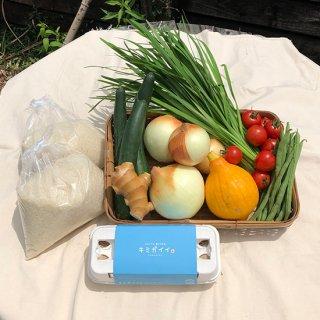 産地直送)土佐山産 厳選野菜6種|有機生姜|土佐ジローの卵|お米 コシヒカリ