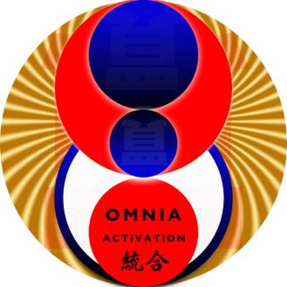 1年間のオムニア・アクティベーション・統合(覚醒と全我への統合)