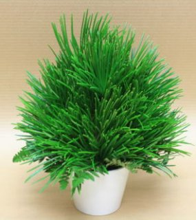 こだわりの一品。高野槇のアレンジメント「深山の香」