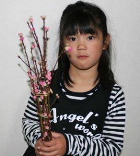 [2月上旬よりの発送です][ひなまつり] ピンクの濃い八重咲きの桃で! 花桃75cm・1把・お手軽品