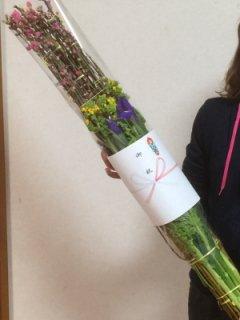 [1月28日より発送開始]あふれる桃の花 おひな祭り 桃の花束 基本セット 送料無料 桃の花 ナタネ イリス