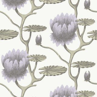 Summer Lily / 95/4023 / Contemporary Restyled / Cole&Son