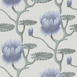 Summer Lily / 95/4024 / Contemporary Restyled / Cole&Son