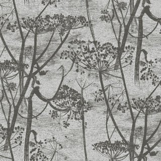 Cow Parsley / 95/9050 / Contemporary Restyled / Cole&Son